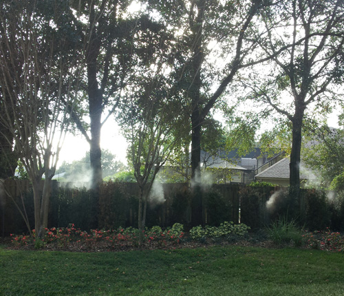 Mosquitoes Misting And Sprays in and near Tampa Florida