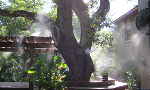 Environmentally Friendly in and near Lakeland Florida