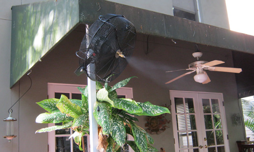 Mosquito Control in and near Lakeland Florida